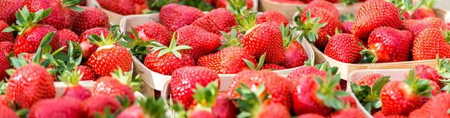 barquettes saison, fruits et légumes