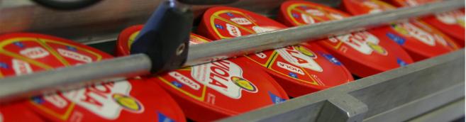 fromage fondu, valio, viola, carton