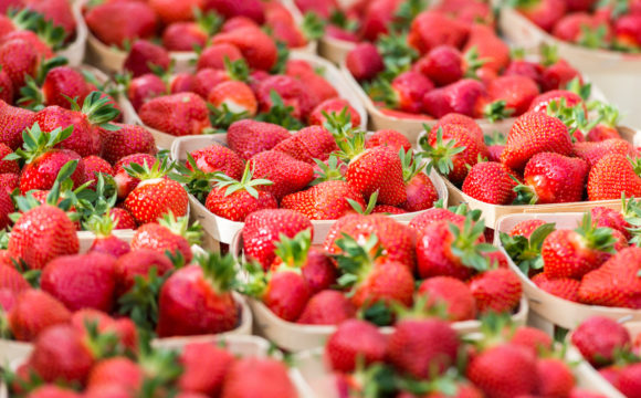 Fraises fruits légumes Lacroix Emballages